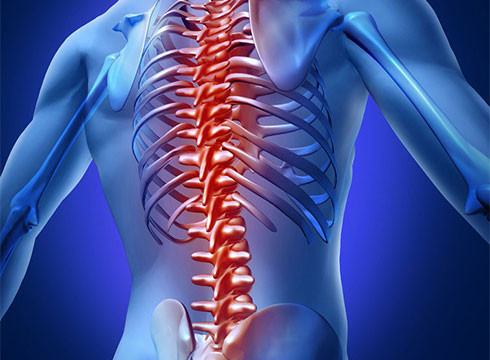 Back and Spine Injuries